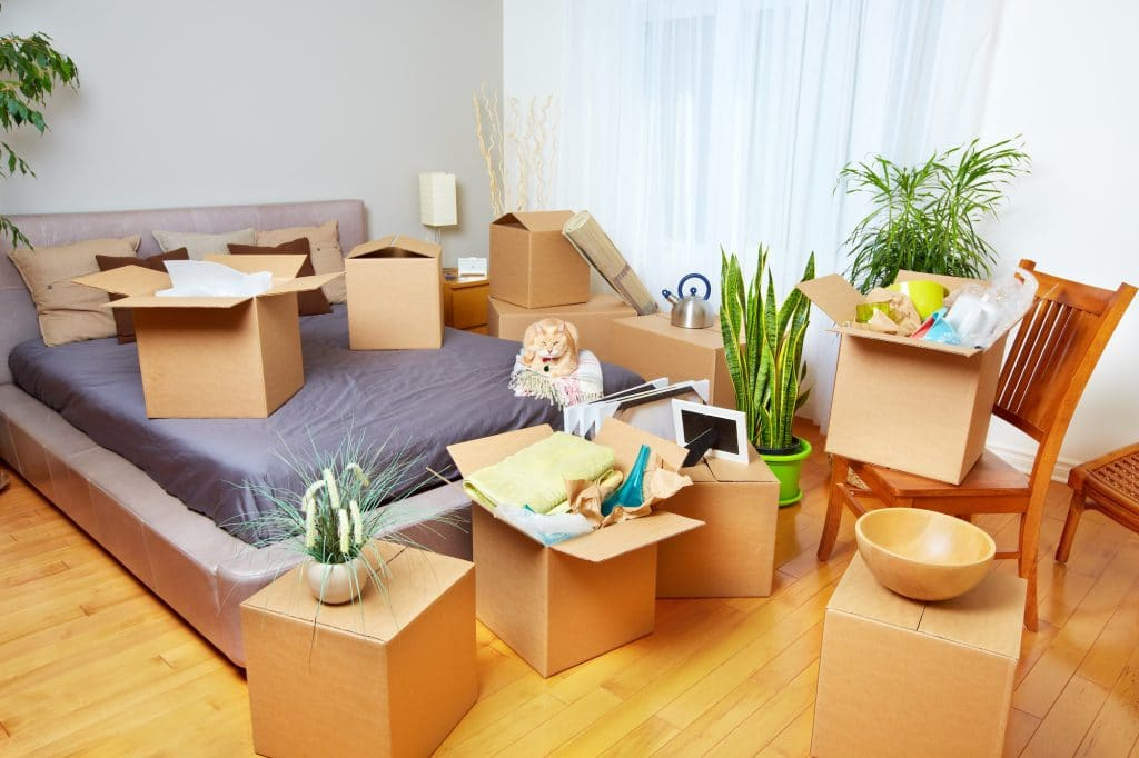 1 bedroom moving pack