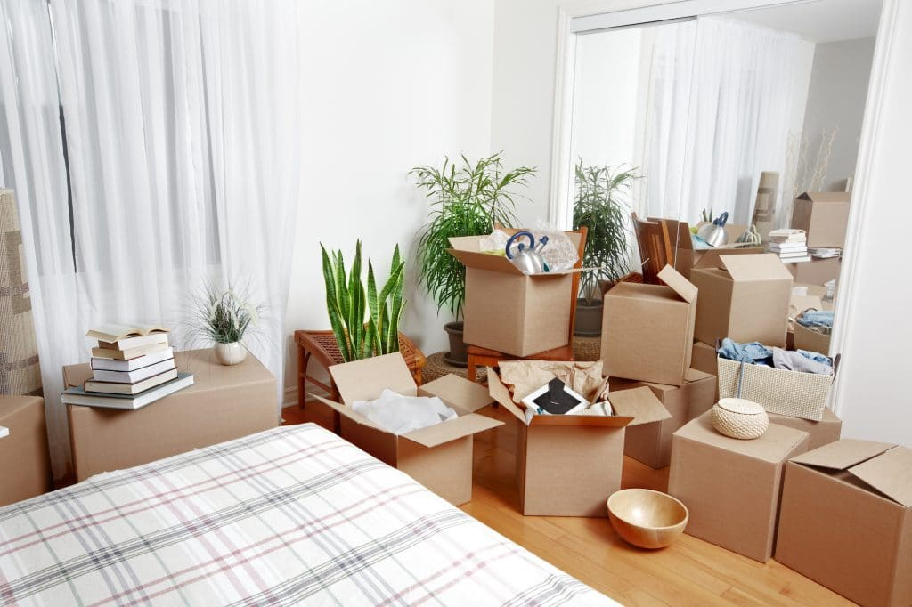Boxes and Moving Packs -